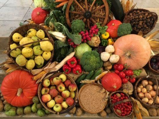 Herbstzeit ist Erntezeit!